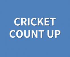 クリケットカウントアップのルール