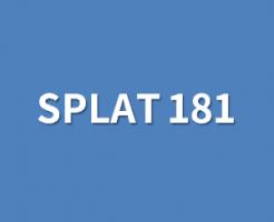 スプラット181のルール