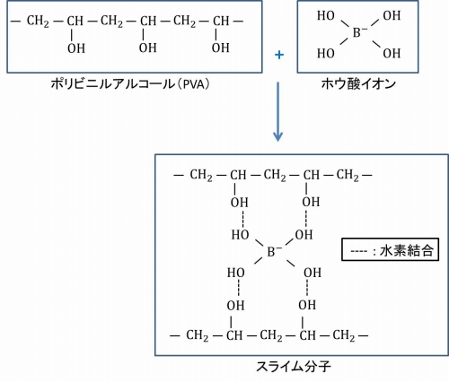 PVAとホウ酸イオンの反応